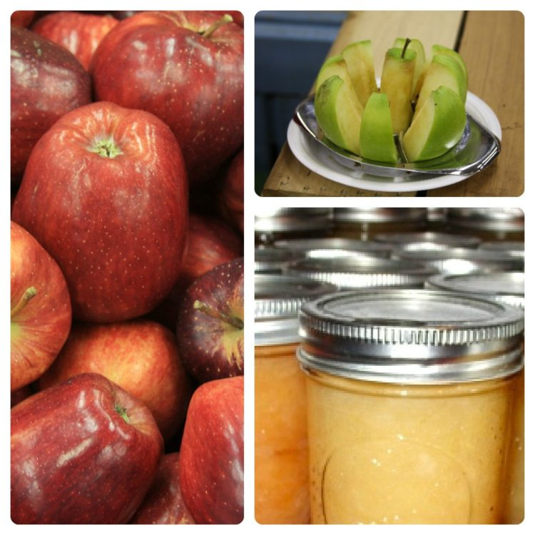 Homemade Applesauce in a Jar