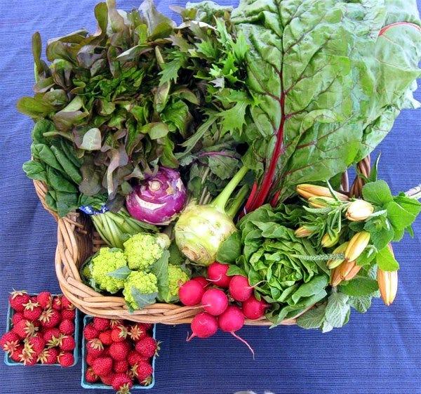 organic-csa-share vegtables