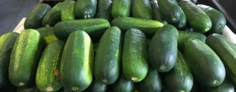 Pickle Tips
