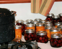 Canning Season Cherries and Peaches