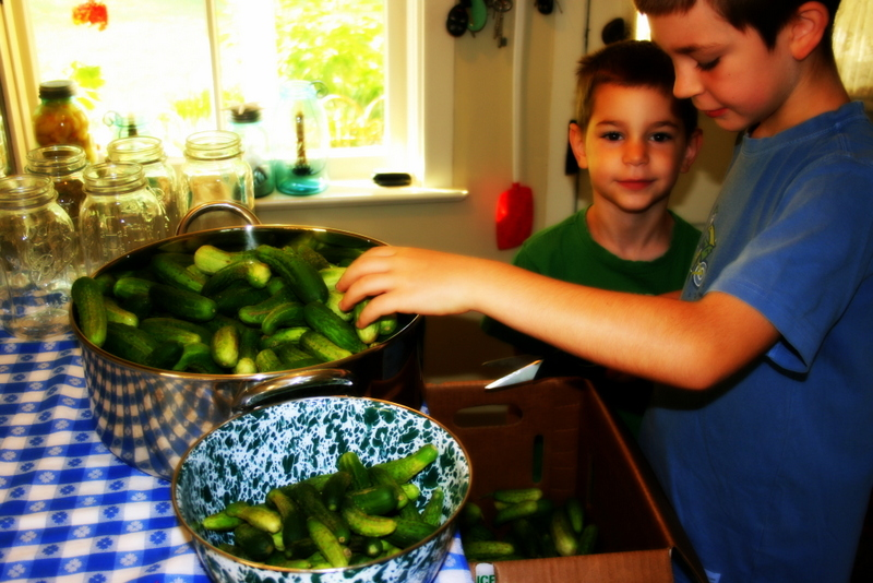 Boys&Pickles
