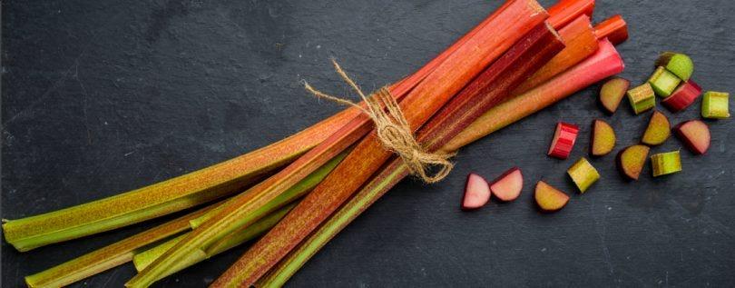 RhubarbBlog