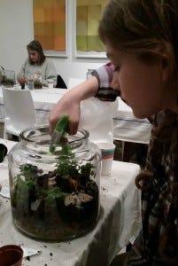 Terrarium - watering