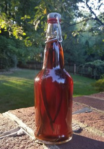 Homemade Vanilla Extract - SwingTop Bottle - Fillmore Container