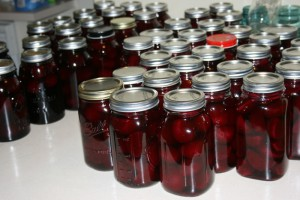 Pickled Beets Fillmore Container