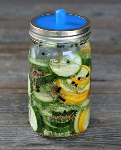 fermenting zucchini with pickle pipe