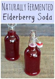 naturally-fermented-elderberry-soda-560x800