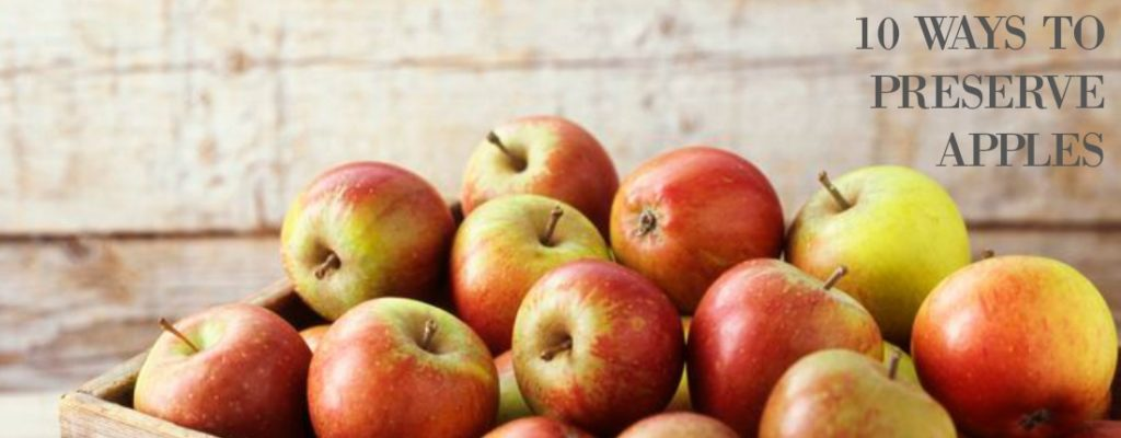 10 Ways to Preserve Apples