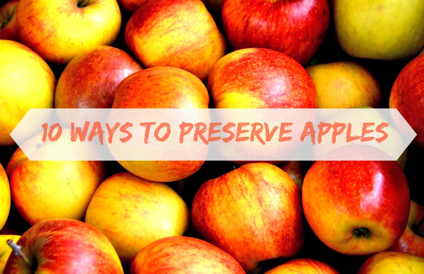 10 ways to preserve apples