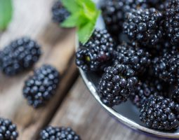 Black Raspberries for Shrub