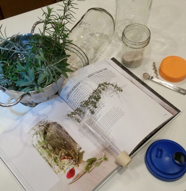 Winter Herb Kvass