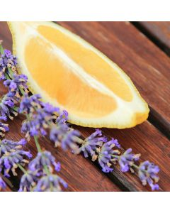 Lemon & Lavender TruScent Fragrance Oil - Fillmore Container