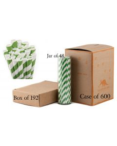Paper Straws Wholesale Green Striped | Aardvark® 61520036