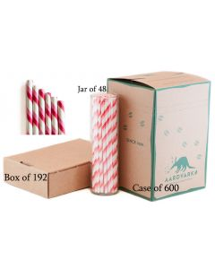 Bubble Gum Pink/Candy Apple Red Dual Stripe Paper Drinking Straw