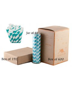 Aqua Blue Striped Paper Drinking Straw