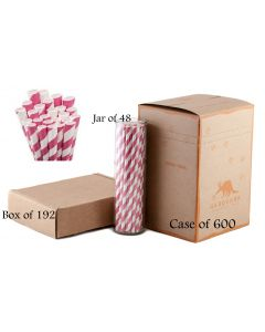 Hot Pink Striped Paper Drinking Straw